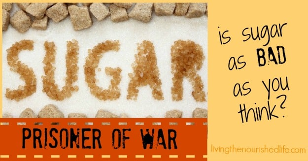 Sugar: Prisoner of War: Is Sugar as Bad as you Think?