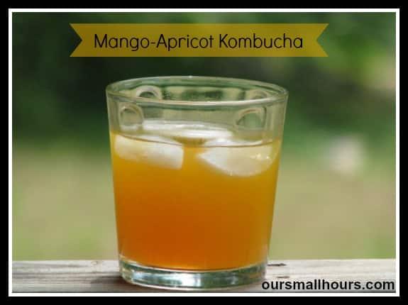 mangoapricotKT