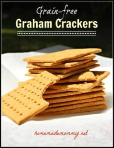 Grain-free-Graham-Crackers-e1374890241720