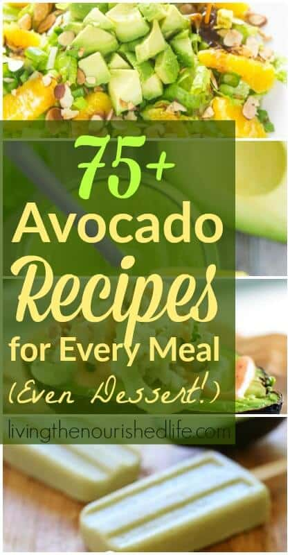 75 Avocado Recipes for Every Single Meal (Snacks and Desserts Included) - from livingthenourishedlife.com