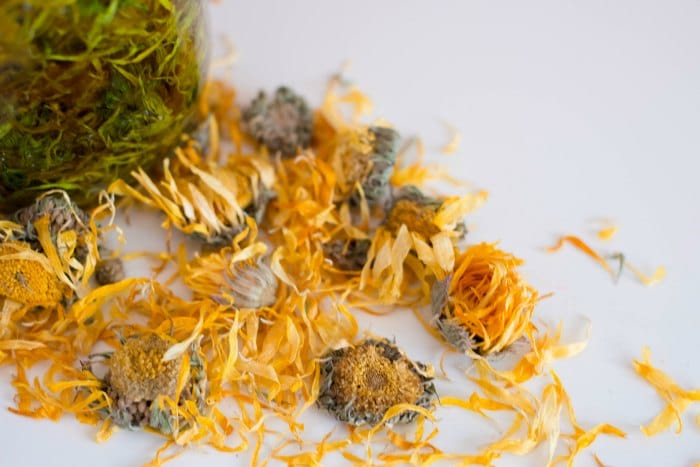 dried yellow calendula flowers on a white table