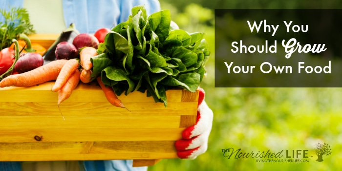 Why You Should Grow Your Own Food