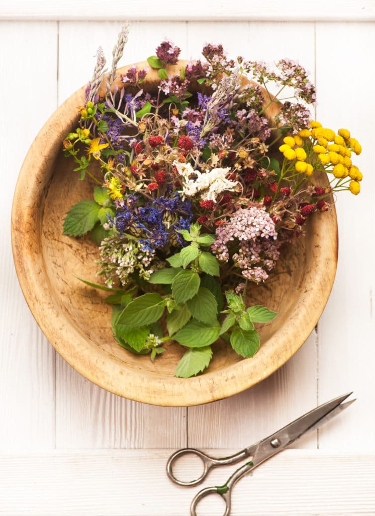 Herbs and flowers in a wooden bowl next to a pair of metal scissors